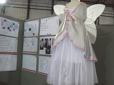 picture of Fairy Dress